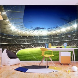 Fotomural - National stadium