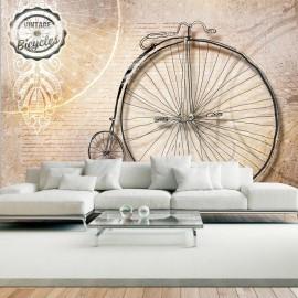 Fotomural - Vintage bicycles - sepia