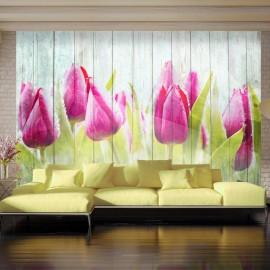 Fotomural - Tulips on white wood