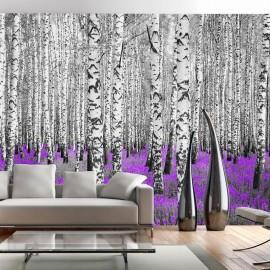 Fotomural - Asilo púrpura
