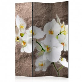 Biombo - Impeccability of the Orchid [Room Dividers]