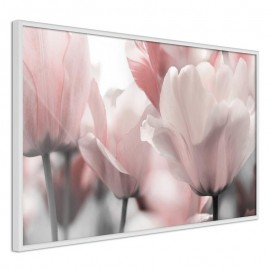 Póster - Pastel Tulips II