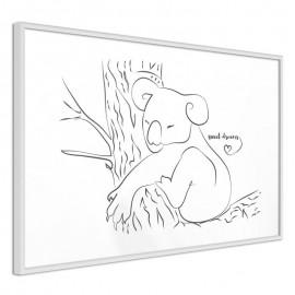 Pôster - Resting Koala