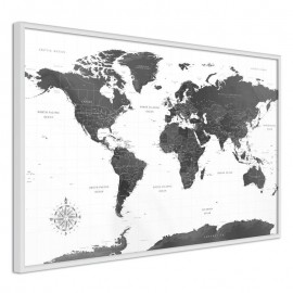 Póster - The World in Black and White