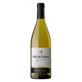 Vino Hoya de Cadenas Chardonnay 2010 Blanco 75 Cl.
