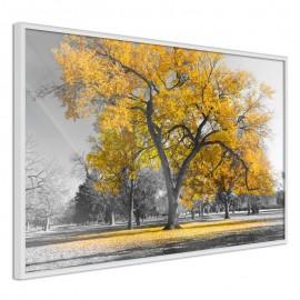 Póster - Golden Tree