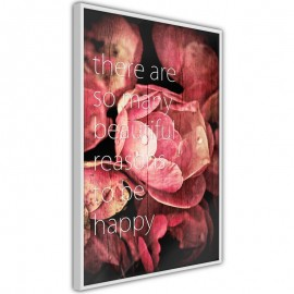 Póster - Many Reasons to Be Happy