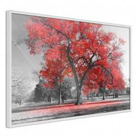 Póster - Red Tree