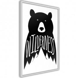 Póster - Wild Bear