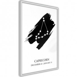 Pôster - Zodiac: Capricorn I