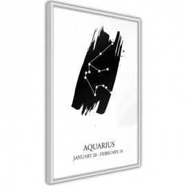 Pôster - Zodiac: Aquarius I