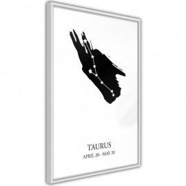 Pôster - Zodiac: Taurus I