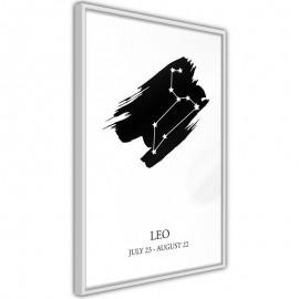 Pôster - Zodiac: Leo I
