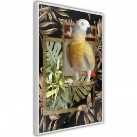 Póster - Composition with Gold Parrot