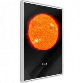 Póster - The Solar System: Sun