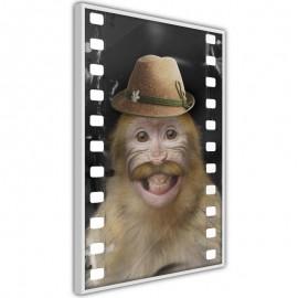 Póster - Dressed Up Monkey
