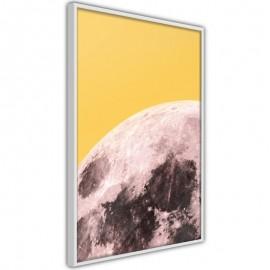 Pôster - Pink Moon
