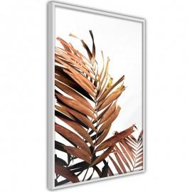 Póster - Copper Palm