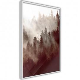 Póster - Forest Fog