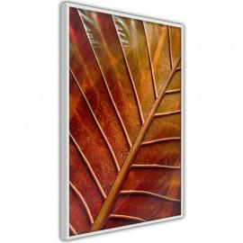 Póster - Bronze Leaf