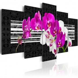 Cuadro - Orquídeas modestas