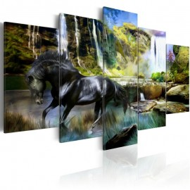 Quadro - Black horse on the background of paradise waterfall