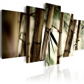 Cuadro - Bosque de bambú asiático
