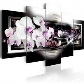 Quadro - Orchids on a black background