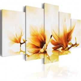 Quadro - Amber magnolias