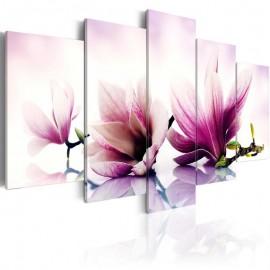 Cuadro - Flores rosadas: magnolias