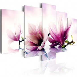 Quadro - Pink flowers: magnolias