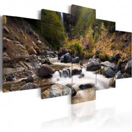 Cuadro - Una cascada en la mitad de naturaleza salvaje
