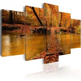 Quadro - Redness of autumn