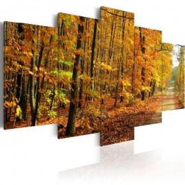 Cuadro - Un callejón entre hojas coloreadas