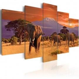 Quadro - Africa: Elephants