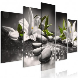 Cuadro - Lilies and Stones (5 Parts) Wide Grey