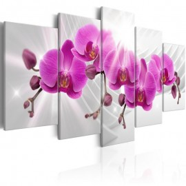 Cuadro - Abstract Garden: Pink Orchids