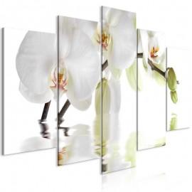 Quadro - Wonderful Orchid (5 Parts) Wide