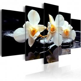 Quadro - Orchids with orange accent