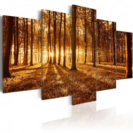 Quadro - Amber forest