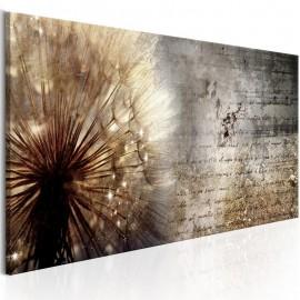 Cuadro - Dandelion on Concrete