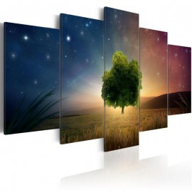 Quadro - Starry Nights
