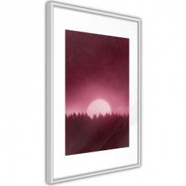 Póster - Moonrise