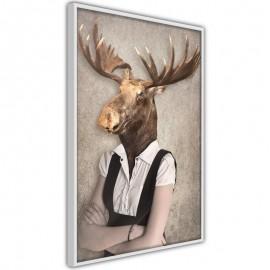 Póster - Animal Alter Ego: Moose