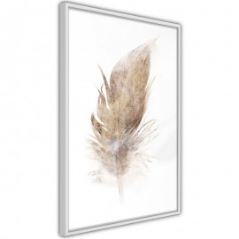 Pôster - Lost Feather (Beige)