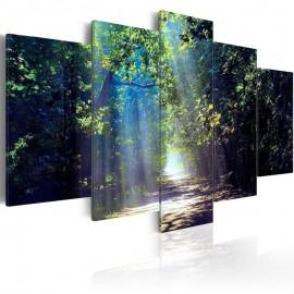 Cuadro - Sunny Forest Path