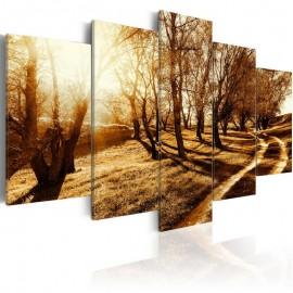 Quadro - Amber orchard