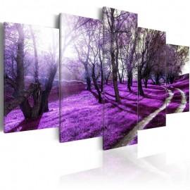 Quadro - Lavender orchard