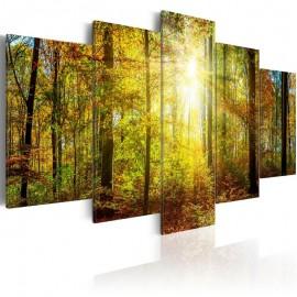 Quadro - Mystical Forest