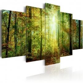 Quadro - Wild Forest